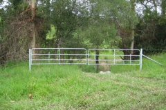 Steel strainer assemblies & steel gates - LA-S07